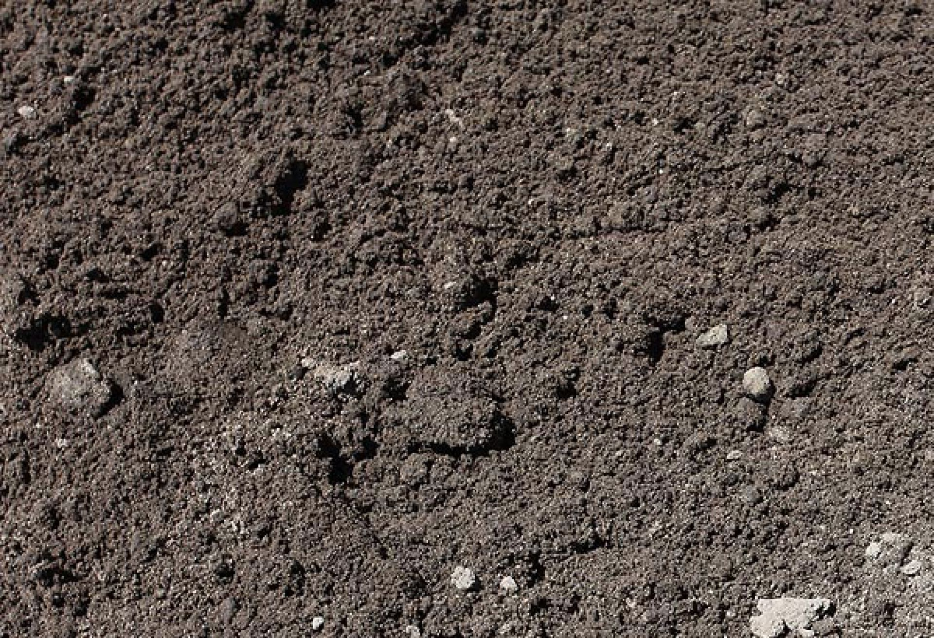 Our products sandy loam for sale bs3882 sandy loam for Types of soil and its uses